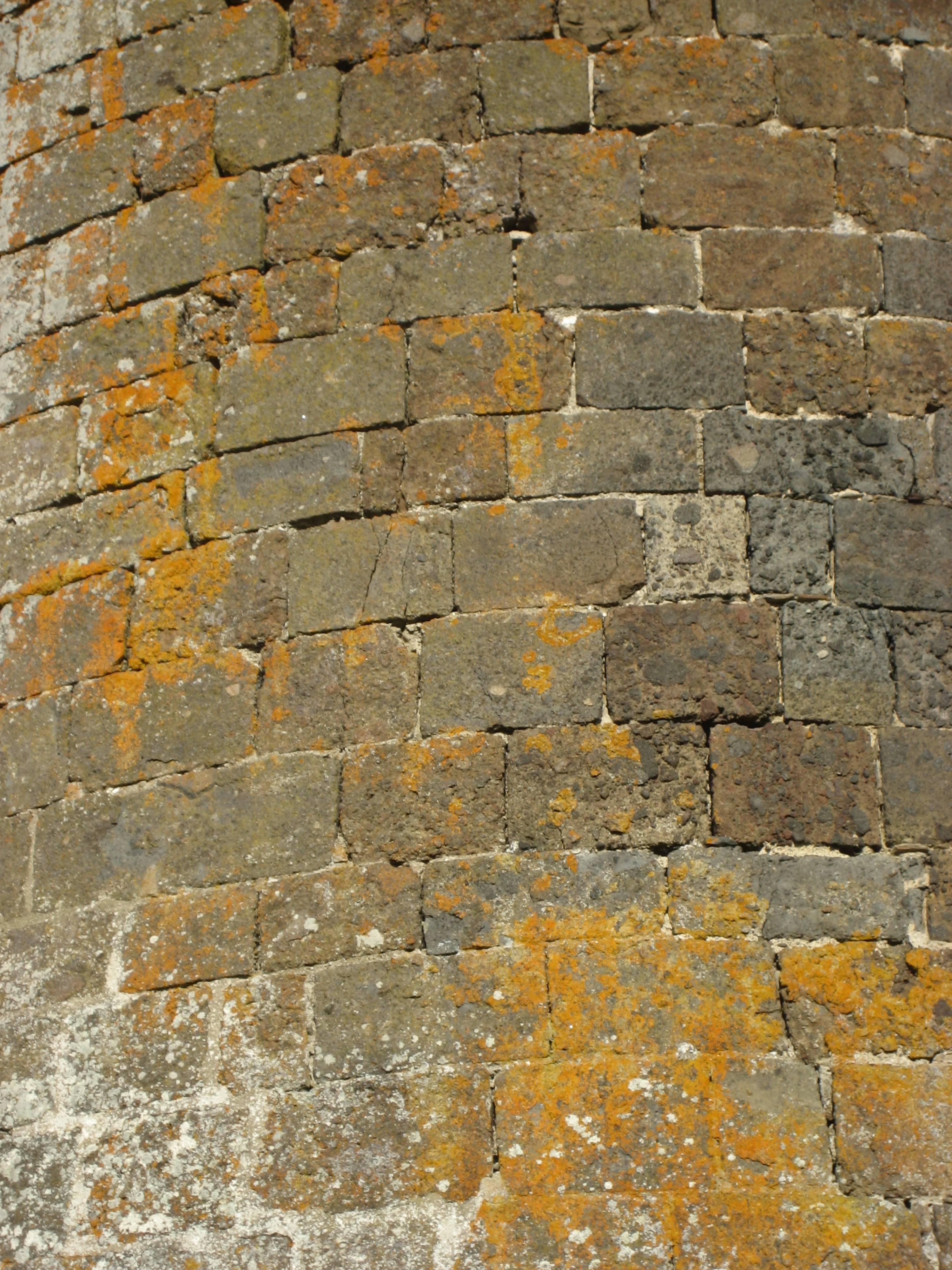 Wall detail, Castel of Anjony, Tournemire, Cantal, France