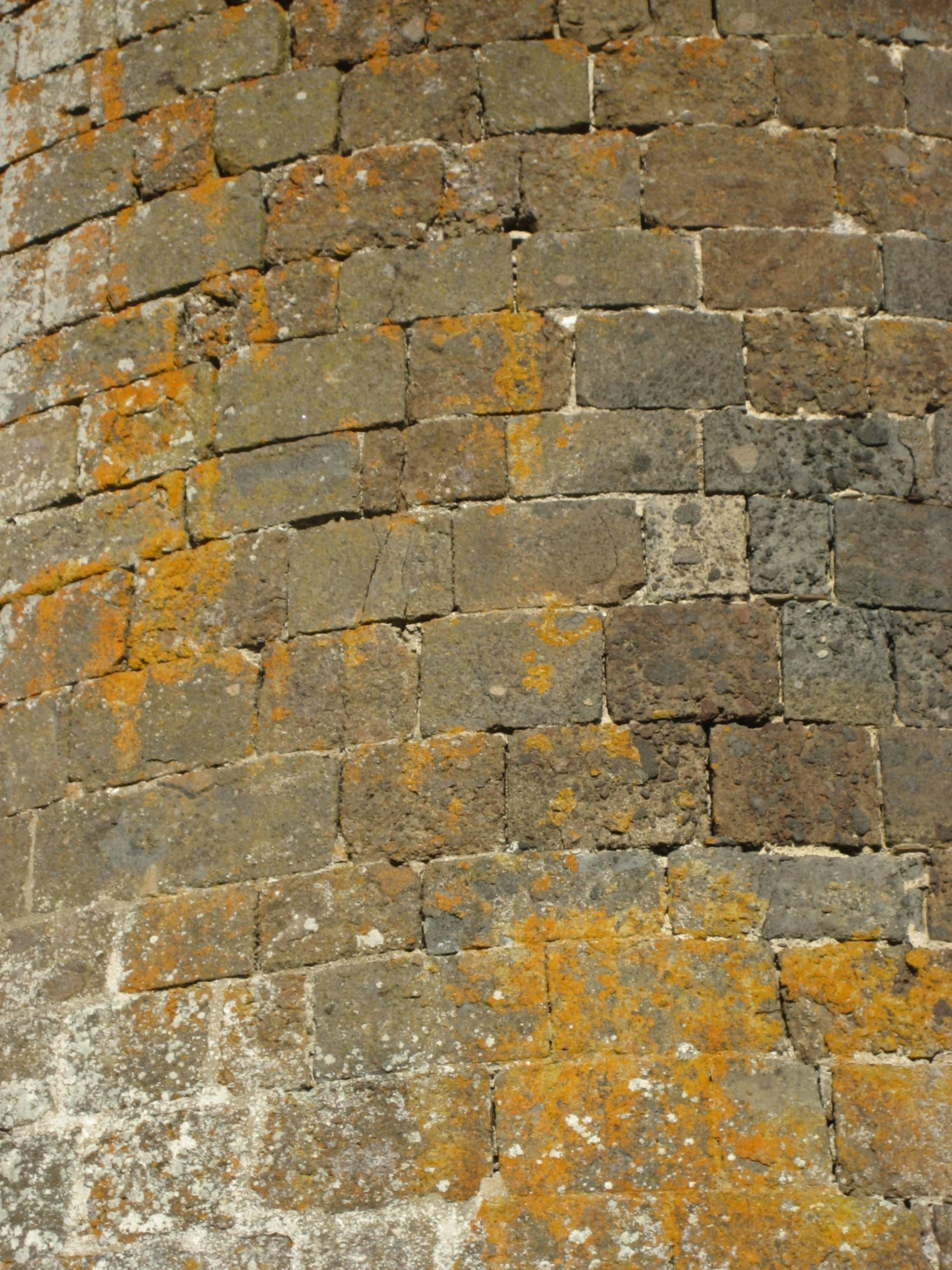 Détail tour, château fort d'Anjony, Tournemire, Cantal, France
